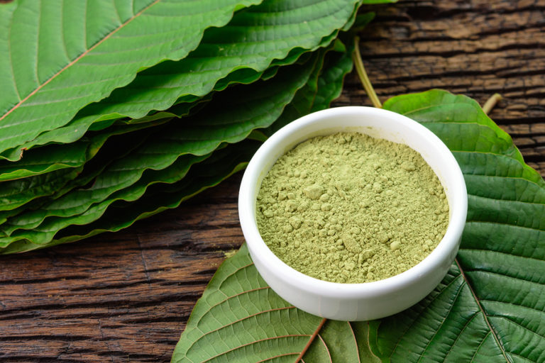 Mitragynina Speciosa Or Kratom Leaves With Powder Product In Whi